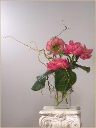 peonies with curly willow: simple, refined, dramatic